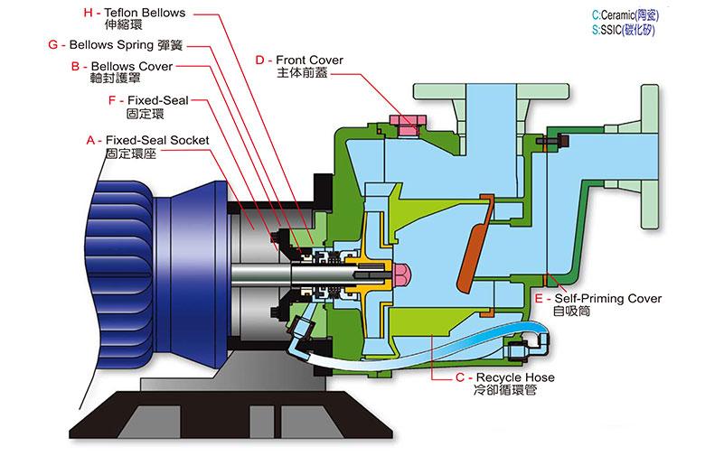塑宝自吸泵结构图